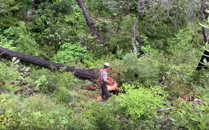 Land clearing services by Genesis Tree Service
