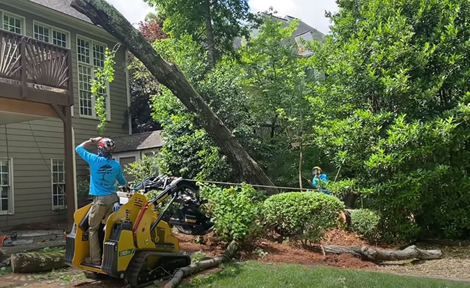 Tree clearing for home renovation by Genesis Tree Service