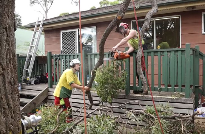 storm cleanup by Genesis Tree Service