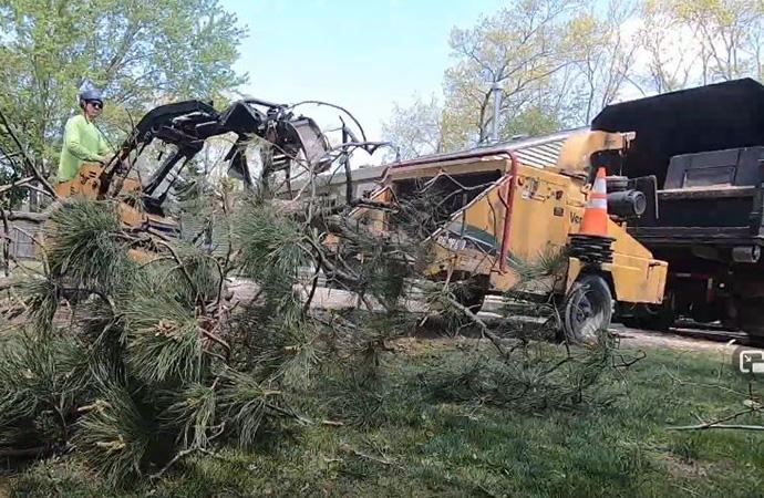 storm cleanup Manassas VA - Genesis Tree Service