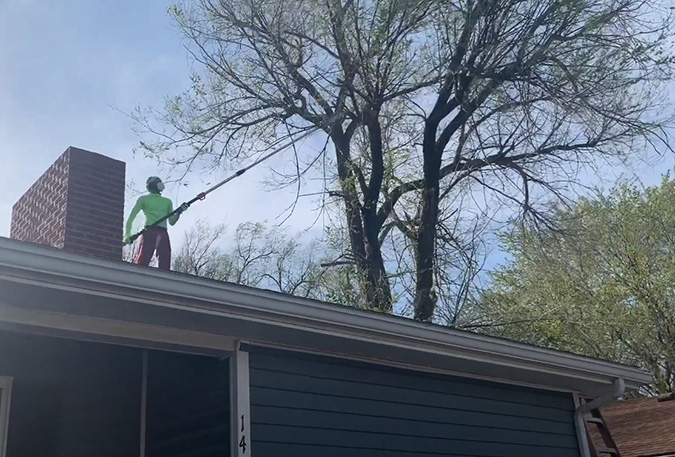 Tree services being completed by Genesis Tree Service Round Hill VA