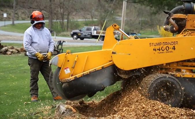 Stump grinding by Genesis Tree Service