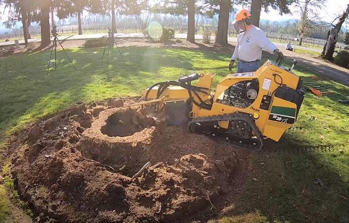 Genesis Tree Service - stump grinding