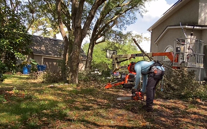 Genesis Tree Service preparation for tree removal