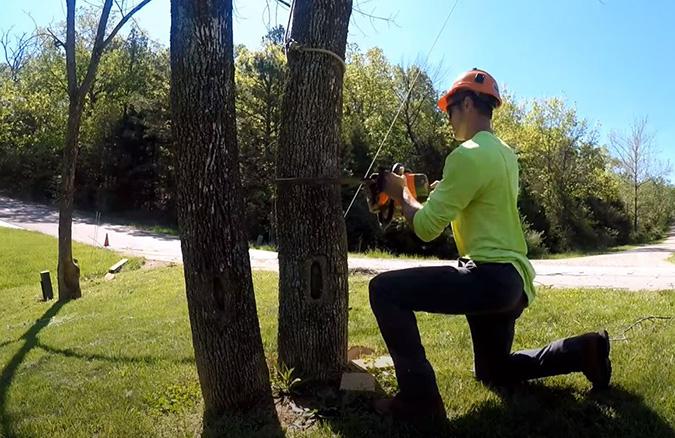 Genesis Tree Service arborist setting up for tree removal