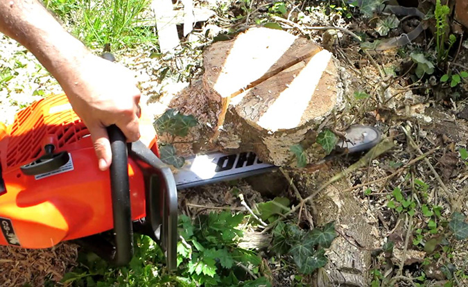 Stump Removal by Genesis Tree Service