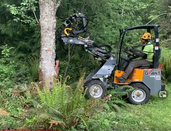Land clearing by Genesis Tree Service